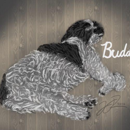 Buddy Drawing Final