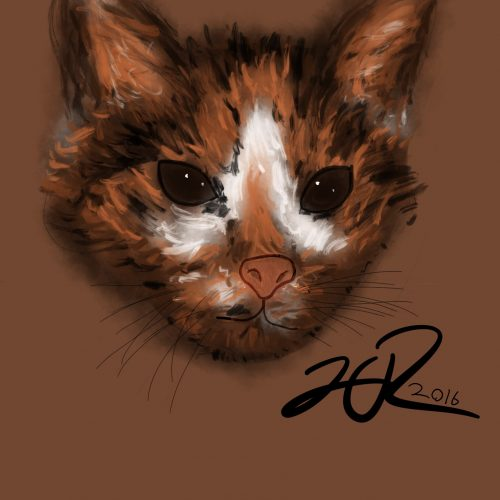 Cheesie Drawing - Cat